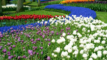 Half-Day Keukenhof Gardens Tour from Amsterdam, Amsterdam, Day Trips