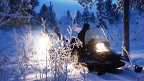 Snowmobile Aurora Expedition With Dinner, Northern Sweden, Ski & Snow