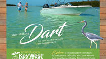 Dart Backcountry Private Customized Charter, Key West