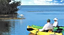 Geiger Key Backcountry Kayak Eco Tour, Key West, Kayaking & Canoeing