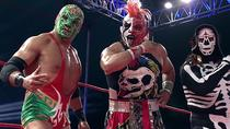 Lucha Libre and Mariachi, Mexico City, Half-day Tours