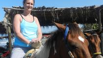Acapulco Beach Horseback Riding Baby Turtle Release with Chapel of Peace Visit, Acapulco, ...