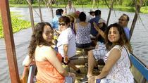 Coyuca Lagoon, Turtle Release, and Witch Doctor Market Tour from Acapulco, Acapulco, Eco Tours