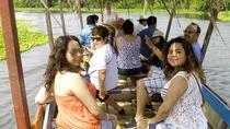 Private Tour: Coyuca Jungle, Turtle Release and Witch Doctor Market Visit, Acapulco, Private ...