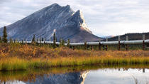 Arctic Circle Tour, Fairbanks, Full-day Tours