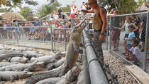Florida Everglades Airboat Ride and Reptile Show, Miami, Airboat Tours