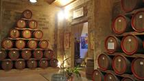 Private Wine Tour and Archeological Area of Selinunte with licensed Guide, Palermo, Private ...