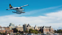Seaplane Flight to Victoria and Whale-Watching Cruise, Vancouver, Dolphin & Whale Watching