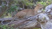 THE UTMOST YALA EXPERIENCE, Yala National Park, Hiking & Camping