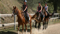 Half-Day Horseback Ride in Tuscany for beginner riders, Tuscany, Horseback Riding