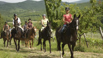 Horse Riding in Tuscany for Experienced Riders: Full-day Trail Ride, Tuscany, Horseback Riding