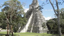 Tikal Maya Ruins Full Day Tour from Guatemala City, Guatemala City, Archaeology Tours