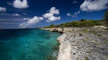 Bonaire Land and Sea Combo Tour, Bonaire, Full-day Tours