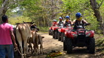 ATV CANOPY Tour in the Papagayo Gulf, Playa Hermosa, 4WD, ATV & Off-Road Tours