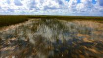 90-Minute Private Air Boat Tour of Everglades National Park, Miami, Airboat Tours