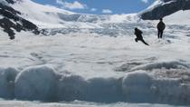 Il tour di Columbia Icefield include il Glacier Skywalk da Banff, Banff
