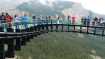 Rocky Mountains Tour: Calgary to Jasper, Calgary, Half-day Tours