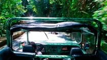 Half-Day Jeep Tour of Tijuca Forest, Rio de Janeiro, 4WD, ATV & Off-Road Tours