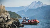 Howe Sound Sea Safari Cruise, Vancouver, Dolphin & Whale Watching