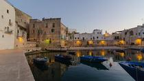 Sea, Nature and Olive Oil: 3-Hour Bike Tour to Discover the Apulian Specialties from Monopoli, ...