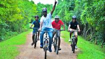 Explore Galle in the Morning: Bike and Tuk Tuk Adventure Along the Coast, Galle, 4WD, ATV &...