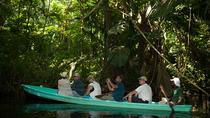 Canoe Tour at Tortuguero National Park, Limon, Eco Tours