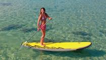 Stand Up Paddleboarding Lessons, Maui, Stand Up Paddleboarding