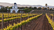 Baja Mexico Winery and Vineyard Tour, San Diego, Day Trips