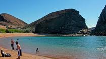 4-Day Santa Cruz Island Tour, Galapagos Islands, Multi-day Tours