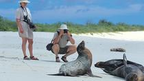 5-Day Galapagos Tour: Santa Cruz and Isabela Islands, Galapagos Islands, Multi-day Tours