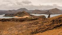 Full-Day Bartolome Island Tour, Galapagos Islands, Day Trips