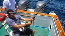 Full Day Fishing Marlin Tour in Galápagos, Galapagos Islands, Other Water Sports