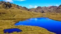 Private Cajas National Park Half-Day Tour from Cuenca, Cuenca