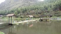 Private Fishing Full-Day Tour in Cajas National Park from Cuenca, Cuenca, Fishing Charters & Tours