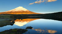 Shared Cotopaxi National Park Tour from Quito, Quito, Day Trips