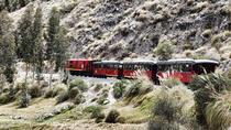 'Tren del Hielo I' Experience: Riobamba - Urbina - La Moya - Riobamba, Guayaquil, Rail Tours