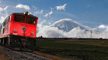 'Tren del Hielo II' Experience: Ambato - Mocha - Urbina - Cevallos - Ambato, Quito, Rail Tours