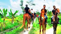 Horse Riding in Ubud, Ubud, Horseback Riding