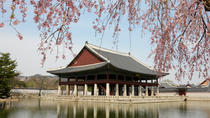 Full-Day Essential Seoul Tour, Seoul, Walking Tours