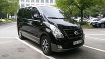 Private Transport Service: Incheon Airport to Seoul, Seoul, Airport & Ground Transfers