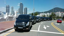 Private Transport Service: Seoul to Pyeongchang, Seoul, Airport & Ground Transfers