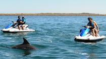 Perth Jet Ski Tour, Perth, Waterskiing & Jetskiing