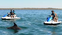 Perth Jet Ski Tours, Perth, Waterskiing & Jetskiing