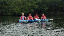 Blackwater River Kayak Tour, Naples, Kayaking & Canoeing