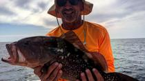 Offshore Fishing Charter near Marco Island, Naples, Fishing Charters & Tours