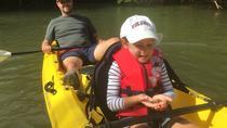Rookery Bay Reserve Kayak Eco Tour, Naples, Kayaking & Canoeing