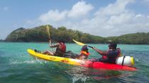 Robert's Bay Guided Kayak Tour, Martinique, Kayaking & Canoeing