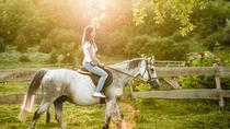 Half-day Chianti Horseback Riding, Lunch and Wine Tasting Tour from Castellina, Chianti, Horseback ...