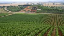 Luxury Maremma wine tour, Rome, Day Trips