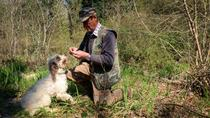 Truffle Hunting with Wine and Olive Oli Tasting in Tuscan farmhouse, Florence, 4WD, ATV & Off-Road ...